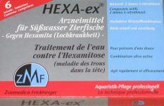 Trou dans la Tête Hexa_ex_01a