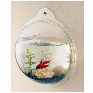 Pire aqua web for Aquarium boule